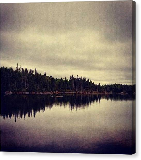 Trout Canvas Print - Tree Reflections by Julia Norris