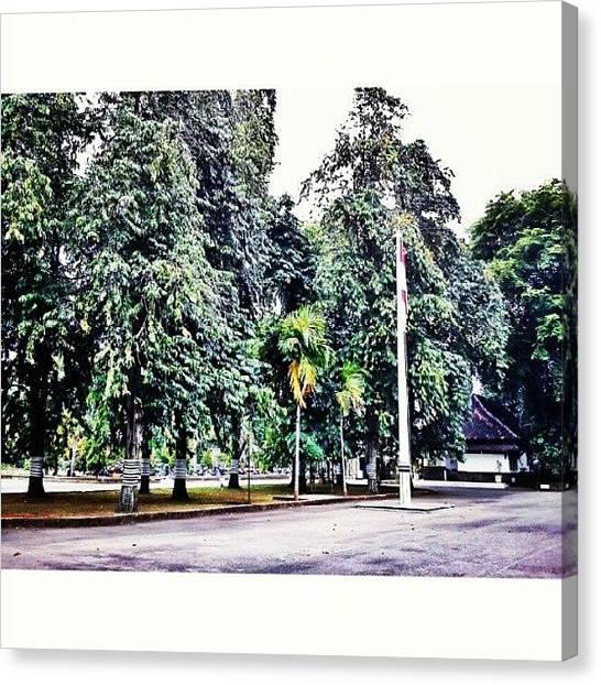 Shakira Canvas Print - #trees #flag #indonesia #instagood by Inas Shakira