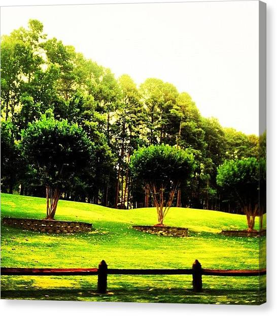 Golf Canvas Print - Trees by Katie Williams