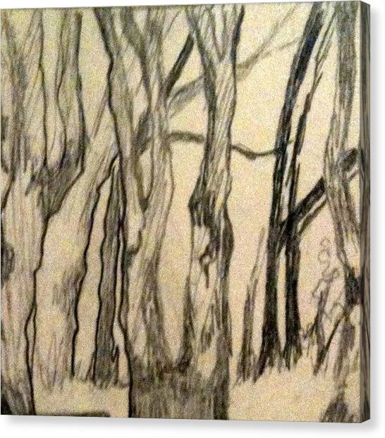 Pencils Canvas Print - Trees by Lisa Catherwood