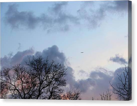 Trees On The Background Of A Cloudy Sky At Twilight Canvas Print by Gal Ashkenazi