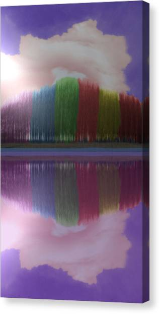 Trees With Color And Light Canvas Print
