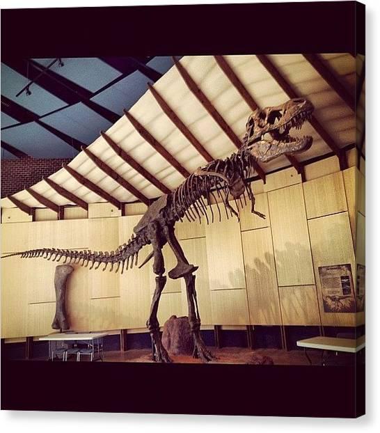 Dinosaurs Canvas Print - #trex#bones#dinosaur#jurassic#museum by Stephanie Thomas
