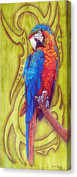 Tribal Macaw Canvas Print by Diana Shively