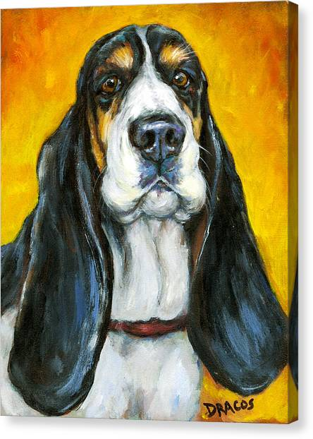 Tricolored Basset Hound On Gold Canvas Print by Dottie Dracos