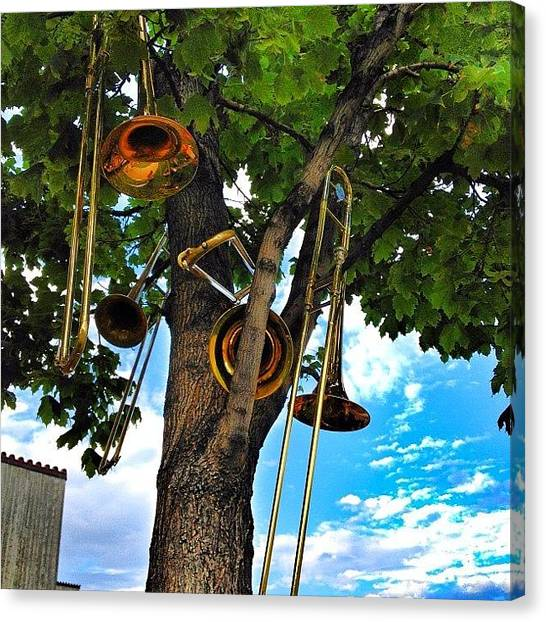 Wind Instruments Canvas Print - Trombone Tree 😁 #colorado #tree by Shannon Engbrecht