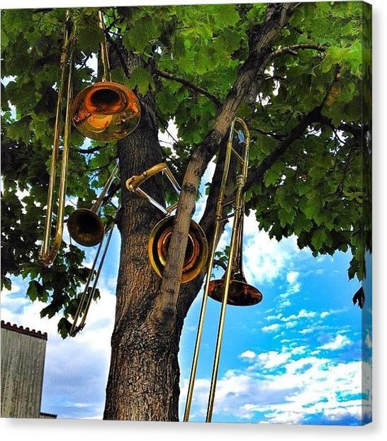 Trombones Canvas Print - Trombone Tree 😁 #colorado #tree by Shannon Engbrecht