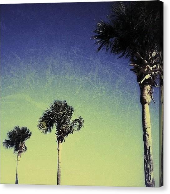Miami Canvas Print - #tropical #miami by Joel Lopez