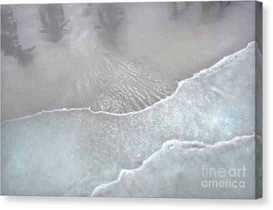 Tropical Reflections B Canvas Print
