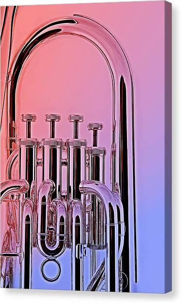 Tuba Euphonium Valves Isolated Canvas Print by M K  Miller