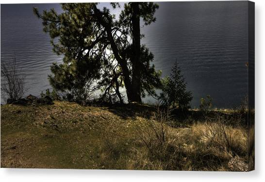 Tubbs Hill On Lake Cd'a Canvas Print by Grover Woessner