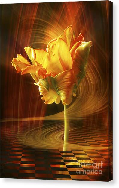 Tulip In Movement Canvas Print