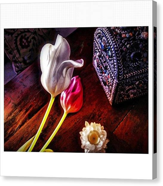 Tulips Canvas Print - Tulips With Jeweled Chest by Paul Cutright
