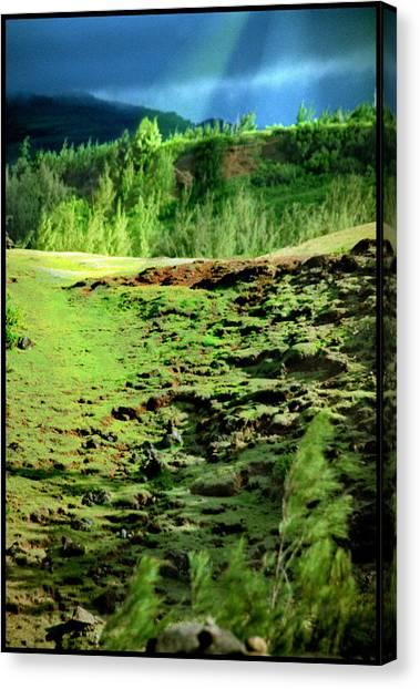 Tuolumne Meadows Yosemite Canvas Print by Noah Brooks