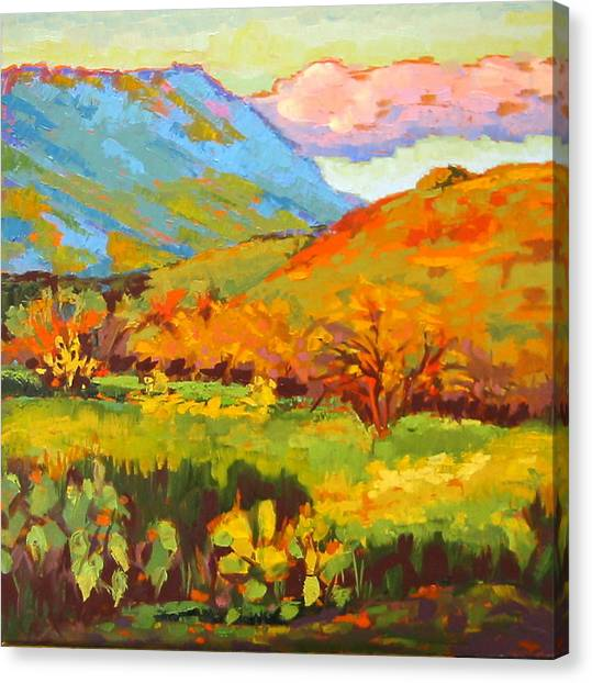 Turquoise Mountain Coral Hill Canvas Print