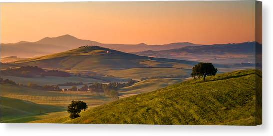 Tuscan Morning Canvas Print by Daniel Sands