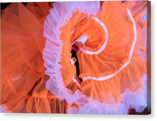 Tutu Swirls Canvas Print by Denice Breaux