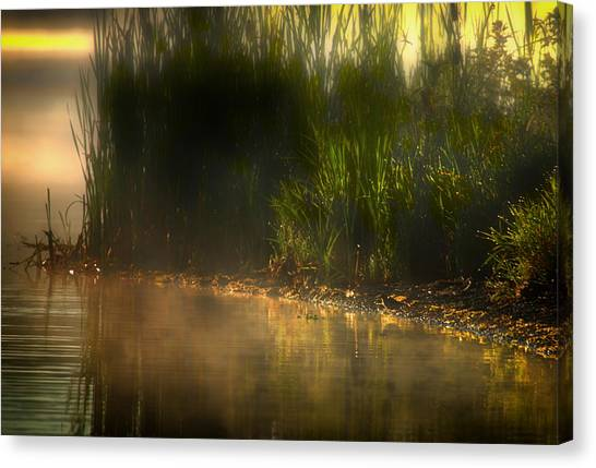 Tweet Tweet And Think Of Me Canvas Print by Gary Smith