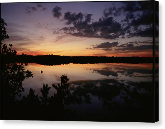 Florida Panthers Canvas Print - Twilight Over The Waters Of The J. N by Joel Sartore