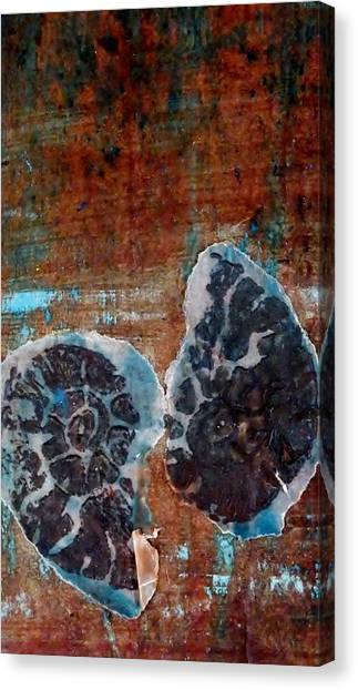 Twin Fossils Canvas Print by Emma Manners