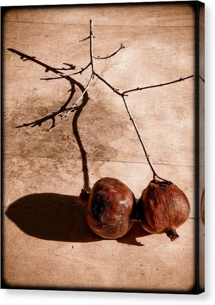 Albuquerque, New Mexico - Twin Pomegranates Canvas Print