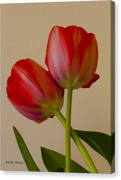 Twin Tulips Canvas Print