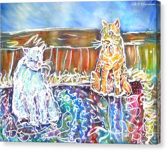 Two Cats On The Carpet Canvas Print by M c Sturman