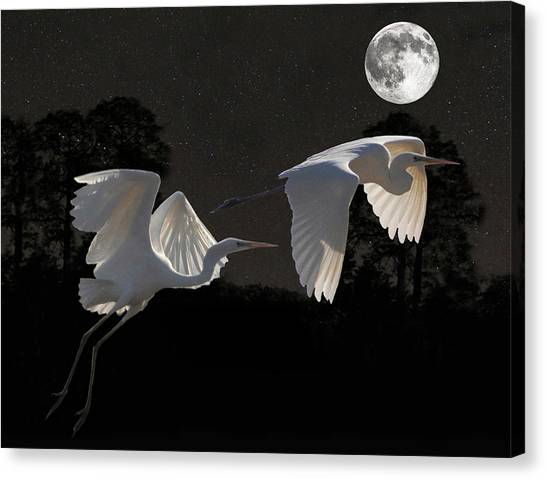 Canvas Print featuring the mixed media Two Great Egrets  by Eric Kempson