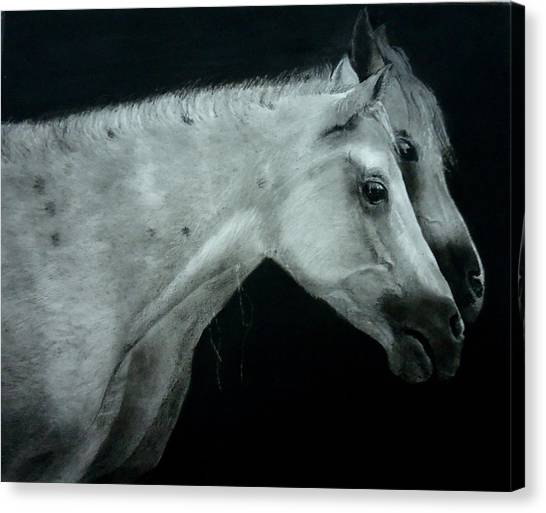 Two Is Company Canvas Print