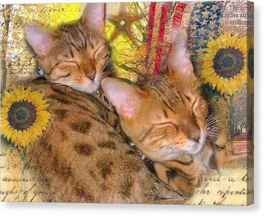 Two Kitties Sitting In A Tree Canvas Print