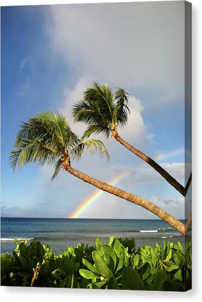 Two Palm Trees On Beach And Rainbow Over Sea Canvas Print by Robert James DeCamp