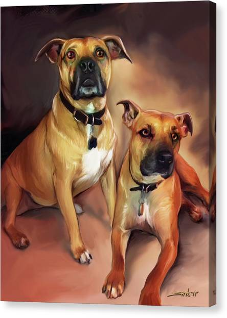 Two Pit Bull Terriers Canvas Print