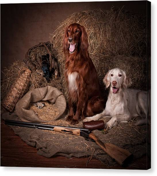 Canvas Print - Two Setters With The Gun... by Tanya Kozlovsky