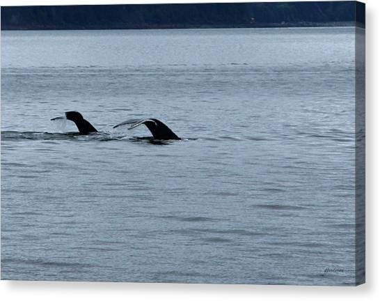 Two Tails Of Whales Canvas Print