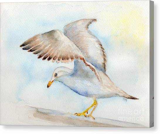 Tybee Seagull Canvas Print