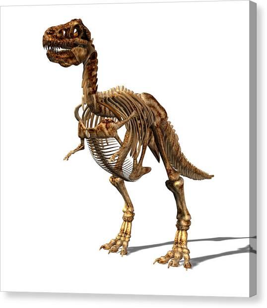 Steak Canvas Print - Tyrannosaurus Rex Dinosaur by Friedrich Saurer