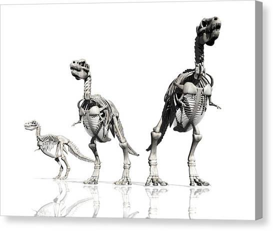 Steak Canvas Print - Tyrannosaurus Rex Skeletons, Artwork by Victor Habbick Visions