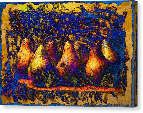 Unborn Pears Canvas Print