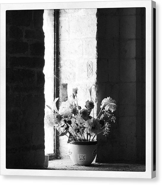 Still Life Canvas Print - Uncolored Flowers by Chi ha paura del buio NextSolarStorm Project