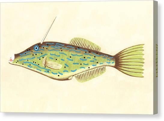 Unicorn Fish Canvas Print