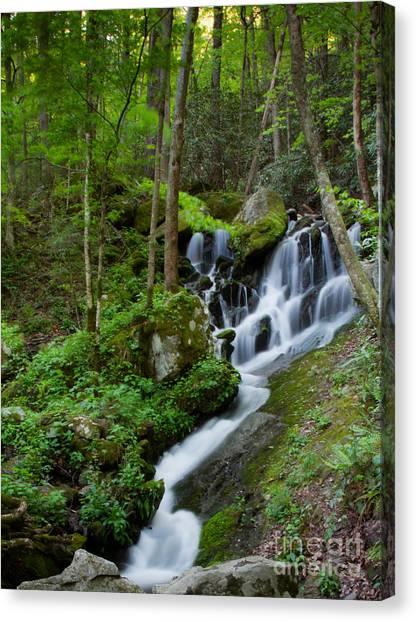 Unnamed Falls At Tremont Nc Canvas Print by E Mac MacKay
