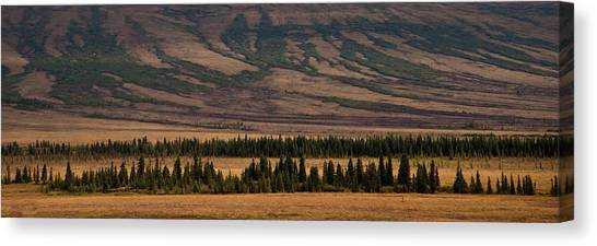 Untouched Canvas Print by Michael Braxenthaler