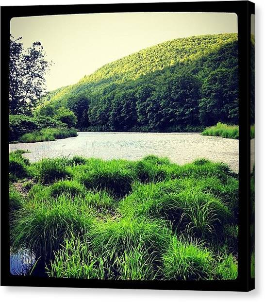 Trout Canvas Print - Upper Delaware River Below Hale Eddy by Dave M
