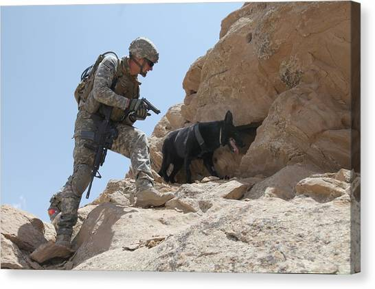 Us Soldier And Blek A Working Dog Clear Canvas Print by Everett