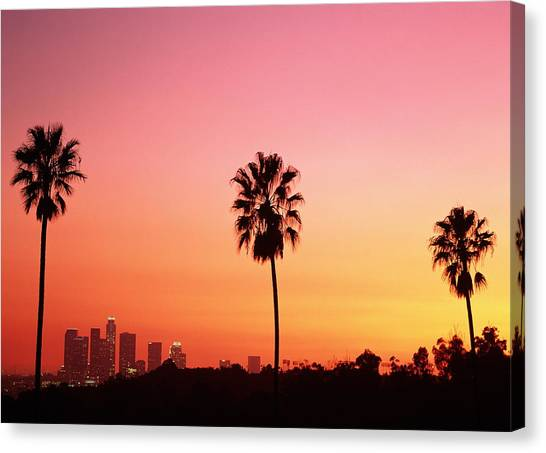 Usa California Los Angeles Skyline And Palm Trees At