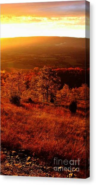 Valley Of Gold Canvas Print by Steven Lebron Langston