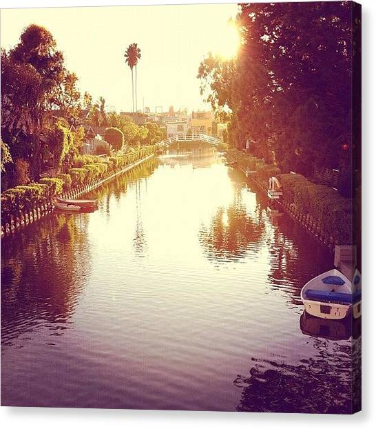 Palm Trees Canvas Print - Venice Canals by Jenna Gibson
