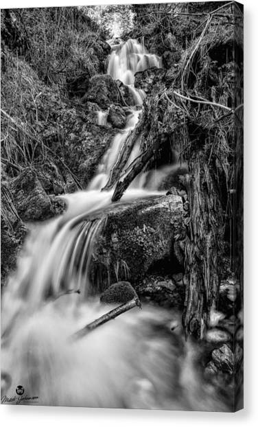 Vertical Falls Bw Canvas Print by Mitch Johanson