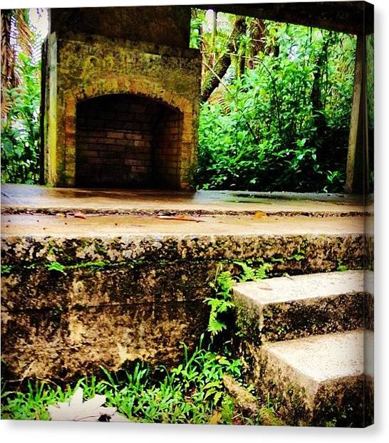 Rainforests Canvas Print - Very, Very Old House by Summer Cloud