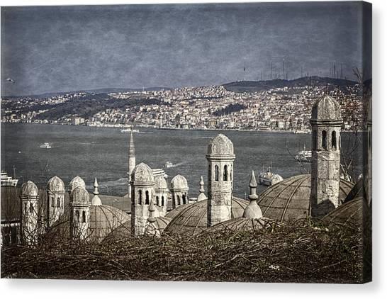 Suleymaniye Canvas Print - View From The Backyard by Joan Carroll